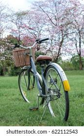 Old vintage steel bicycle in beautiful park