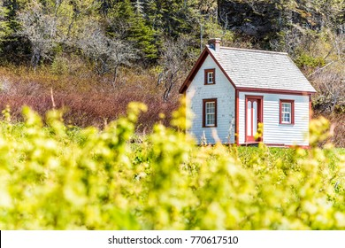 Old vintage white and red wooden house cottage on hill in idyllic rural countryside backyard garden with blackberry, raspberry, black currants on Bonaventure Island in Quebec, Canada in summer