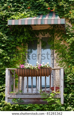 Old Vintage Window Awning Plant Growth Stock Photo Edit Now