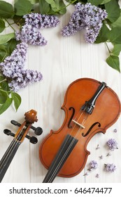 Old Violin and lilac flowers  on white wooden background. Stringed musical instrument. Close up, top wiev, Love spring background.