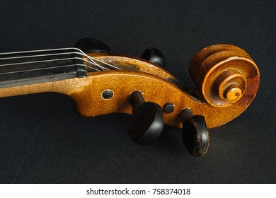 Old violin on black background in the studio