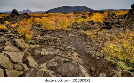 Old Volcanic area of Dimmuborgir in Iceland