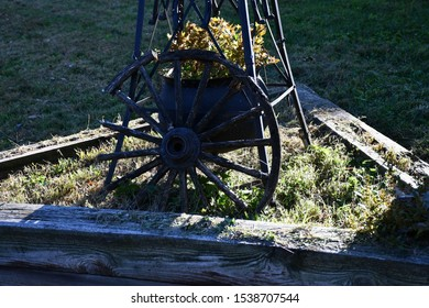 Old wagon wheel in a yard with a decorative plant behind it.