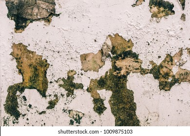 Old Wall with Moldy Peeling White Painting from Humidity. Cracked White Wall as Rusty Concrete Weathered Wall Grunge Background or Abstract Backdrop Wallpaper Vintage Texture Design Copy Space Text