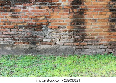 the old wall with softy grass in the front