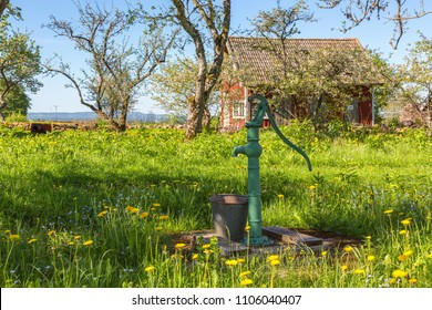 Old water pump in a flowering garden in the spring