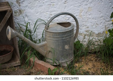 old watering can in the garden