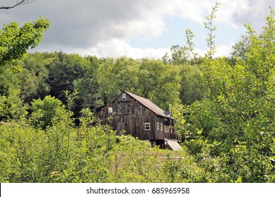 Old weathered gray structure in Vermont surrounded by spring green trees, shrubbery and grass.