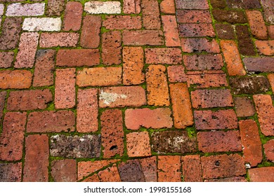 Old weathered handmade clay bricks made over 100 years ago used in unique garden paving  with green grass contrast adds rustic  charm and distinction to an urban garden landscape.