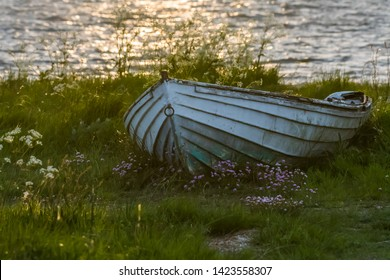 Old weathered rowing boat in green grass with pink flowers
