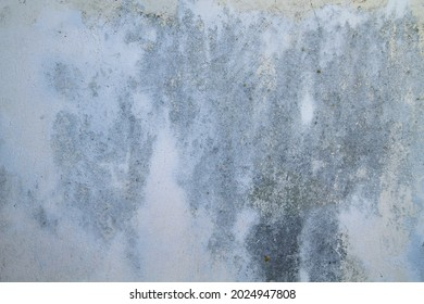 Old weathered white plastered wall with damp, grunuge background or texture