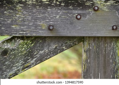 Old weathered wood fence gate close up with green moss flecks and nuts and bolts joining boards