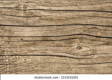 Old weathered wooden plank. Grunge design background.