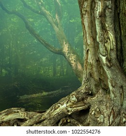 Old weird hollowed chimeric tree with crooked roots in blue hazy mysterious forest