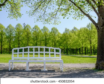 Old white bench with carved shaped back under shades of the trees on the walkway in the park - forest and green meadow in the background, Germany