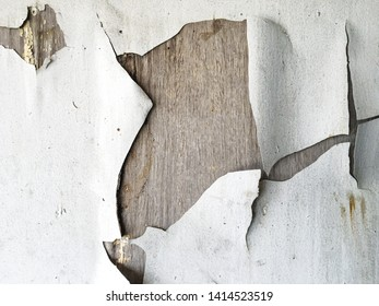 Old white cracked paint, crack background or texture