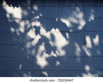 Old white grungy concrete brick wall under large leaf tree branch shade and shadow background in cool blue evening tone