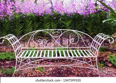 Outstanding White Bench With Flowers Images Stock Photos Vectors Machost Co Dining Chair Design Ideas Machostcouk