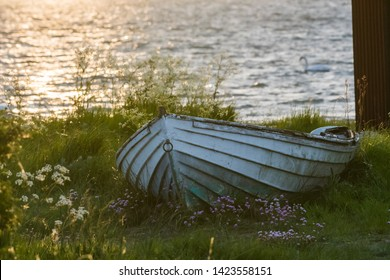 Old white rowing boat on land in the green grass by sunset