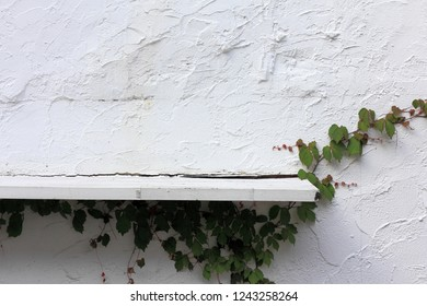 Old white wall and shelf
