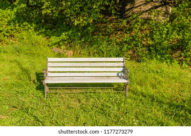 Old white wooden park bench in grassy area of woodland park,