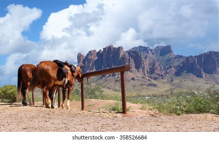 Old Wild West in the desert with mountains and horses