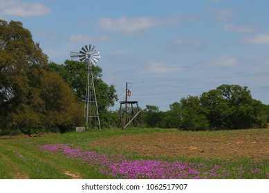 Old windmill and spring flowers in Texas