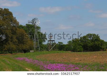 Old Windmill Spring Flowers Texas Stockfoto Jetzt Bearbeiten