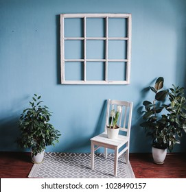 Old window frame, old chair, ficuses.  shabby chic, copy space.