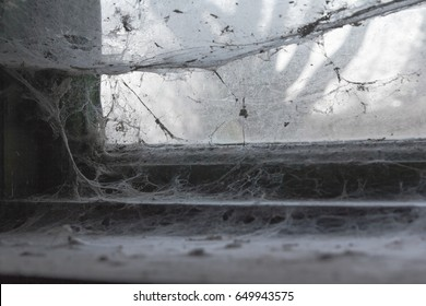Old window with a lot of spider web