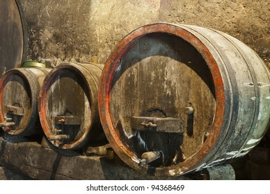 Old wine barrels in a wine cellar with mold and cobwebs