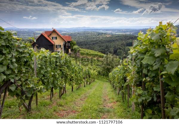 old wine growing area named Schilcherstrasse in Steinreib near Stainz in Styria, Austria