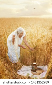 Old woman in the field with wheat harvests the sickle. Vintage cereal harvesting process. Artistic retro photo.