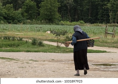old woman goes to work in the fields with hoe under her arm, Serbia