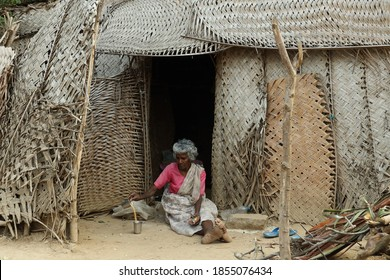 An old woman sitting in front of a house made of ola and drinking tea madhura.tamilnadu.india03/04/2020