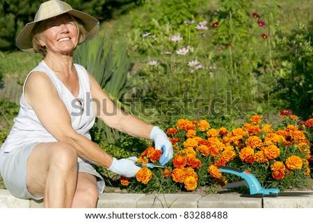 Marvelous Old Woman Work In Garden/Grandma In The Garden/Grandma In The Garden/