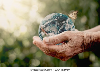 The old woman's hand is holding a globe with white butterflies hanging, ecology concept, Elements of this image furnished by NASA.