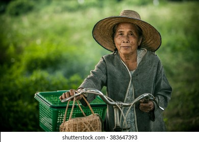 Old women couple with their bikes in the nature, Lifestyle of Asian old women concept