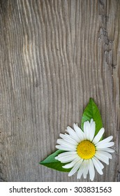 Old wood background with daisy