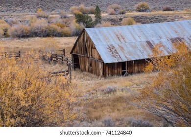Old wood barn with a tin roof on a sagebrush landscape in the Eastern Sierra mountains.