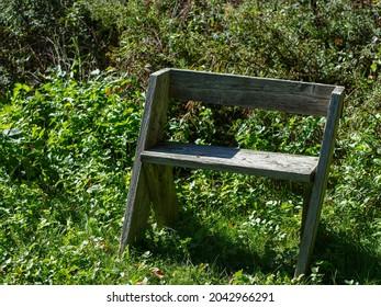 An old wood bench on grass near bushes at Yellowstone Lake SP, Blanchardville, Lafayette County, Wisconsin. Land of Kiikaapoi, Sauk, Meskwaki, Myaamia, Waazija (Ho-Chunk or Winnebago), Očhéthi Šakówiŋ