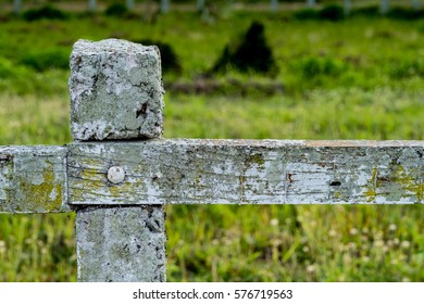 Old wood fence with concrete pole on green blurred background