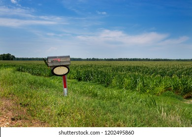 An old wood mailbox in front of a cornfield in a rural area of the Mississippi State, USA