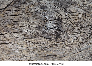 Old wood surface weathering