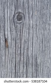 old wood texture with a branch, macro