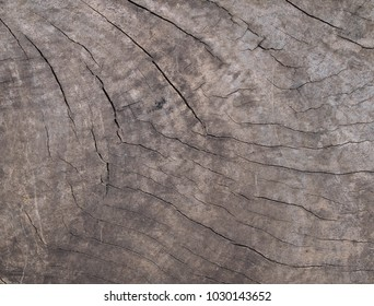 Old wood texture.The surface of the wood is a natural background.