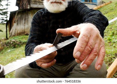 old woodcutter sharpening the saw