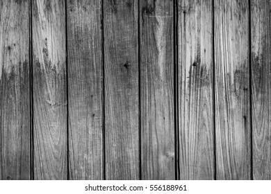 The old wooden background by retro or vintage style , black and white style.