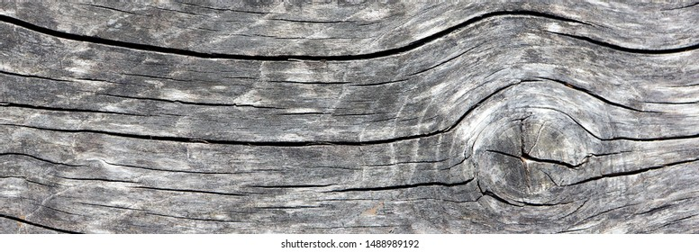 Old wooden background. Copy space.