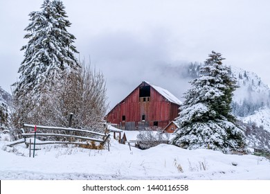 Old Wooden Barn in Forest (Winter) - Methow Valley, Washington, USA